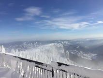 Снег в воздухе стоковые изображения rf