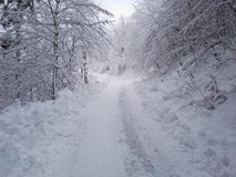 Снег в Германии Стоковые Изображения RF