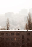 Снег в городе Стоковое Фото