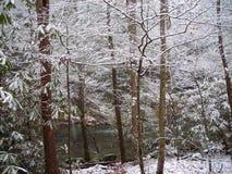 Снег в закоптелых горах стоковые фотографии rf