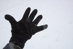Снег в парке в Софии, Болгарии 29-ое декабря 2014 Стоковая Фотография