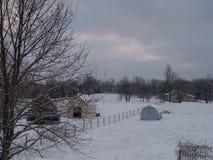 Снег в январе Стоковое фото RF