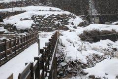 Снег в Японии Стоковая Фотография