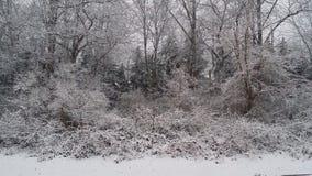 Снег дня дня рождения Стоковая Фотография