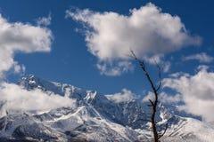 Снег дерева облаков гор Стоковые Фото