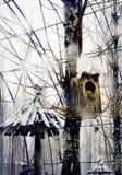 Снег леса Стоковые Фотографии RF
