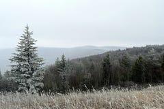 Снег-запыленные холмы Стоковые Фотографии RF