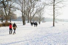 Снег зимы в английском саде, Мюнхене стоковые фото