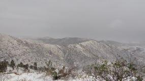 Снег зимы Стоковая Фотография