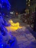 Снег зимы Стоковые Фотографии RF