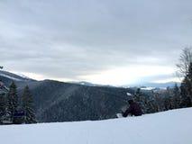 Снег зимы Стоковая Фотография RF