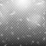 Снег иллюстрации запаса падая изолированный на прозрачной предпосылке Снежинки, снежности Стоковое Изображение RF
