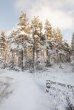 Снег и лед на дороге в Шотландии Стоковые Фото