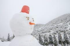 Снег и снеговик Стоковая Фотография