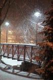 Снег над пешеходным мостом стоковая фотография rf