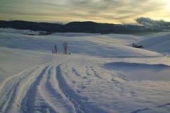 Снег на горах в плато Asiago, Виченца, Италии стоковое изображение rf