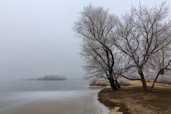 Снег на деревьях Лед на реке Стоковое Изображение RF