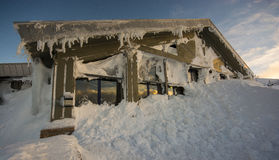 Снег на ресторане тундреной куропатки, Cairngorm Стоковые Изображения