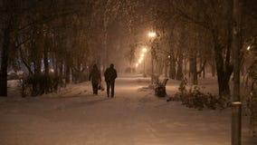 Снег ночи зимы падает в парк сток-видео
