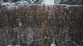 Снег падая outdoors против коричневого замедленного движения предпосылки видеоматериал