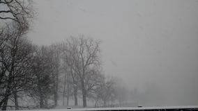Снег парка Caz Стоковое Фото