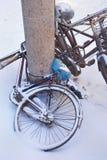 Снег покрыл велосипеды припаркованные против столбца, Чанчуни, Китая Стоковые Фотографии RF