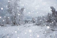 Снег покрыл деревья и тяжелый идти снег в горах Стоковые Фотографии RF