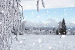 Снег покрыл деревья и тяжелый идти снег в горах Стоковое фото RF