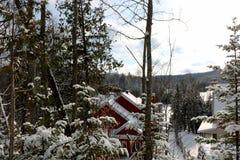 Снег покрыл дом в лесе стоковые изображения rf