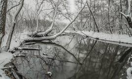 Снег покрыл ландшафты в belmont Северной Каролине вдоль catawba стоковое фото rf