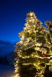 Снег покрыл сосну с освещением и красным орнаментом рождества стеклянного шарика, на открытом воздухе стоковое изображение rf