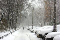 Снег покрыл автомобили в городе Стоковое Изображение