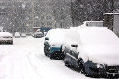 Снег покрыл автомобили в городе Стоковое Изображение RF