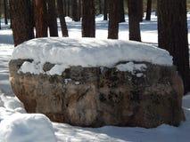 Снег покрыл валун стоковая фотография rf