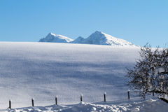 Снег покрыл верхнюю часть горы в tirol стоковые изображения rf