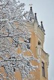 Снег покрыл ветви около замка Ричарда Стоковое фото RF