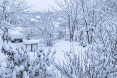 Снег покрыл двор в bnw Стоковое Изображение