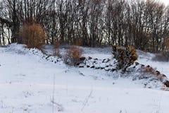 Снег покрыл каменную стену Стоковое Фото