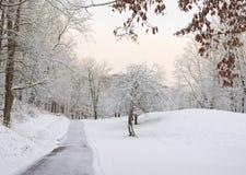 Снег покрыл подъездную дорогу Стоковое фото RF