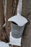 Снег покрыл смертную казнь через повешение ведра сиропа клена на дереве стоковая фотография rf