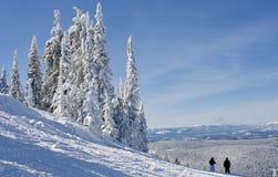 Снег покрыл сценарное на лыжном курорте Стоковые Фото