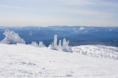 Снег покрыл сценарное на лыжном курорте Стоковое Изображение RF