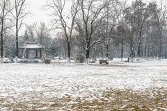 Снег покрыл траву Стоковое Изображение RF