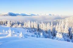Снег покрыл холм и пик Стоковая Фотография