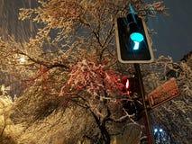 Снег Сантьяго Стоковое Изображение