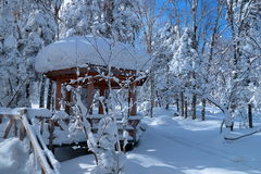 Снег северного Китая Стоковая Фотография RF