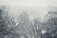 Снег стоковое изображение rf