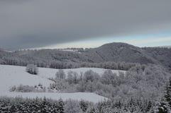 Снег Стоковая Фотография RF