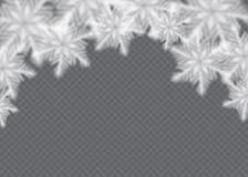 Снег overlay на прозрачной предпосылке Иллюстрация вектора падая изолированных снежинок лавр граници покидает вектор шаблона тесе бесплатная иллюстрация