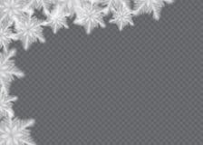 Снег overlay на прозрачной предпосылке Иллюстрация вектора падая снежинок лавр граници покидает вектор шаблона тесемок дуба иллюстрация вектора